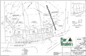 Pine Meadows Lot Plan