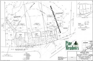 Pine Meadows Lot Plan
